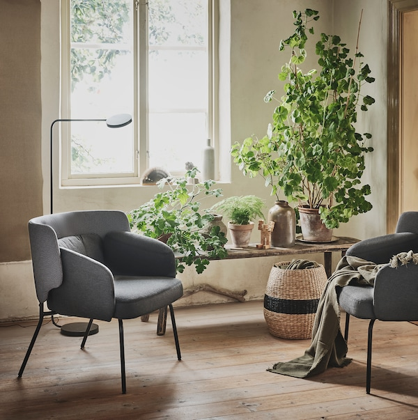 Two grey low back BINGSTA armchairs are seen in a cosy, sunny corner beside a window and a bench filled with plants.