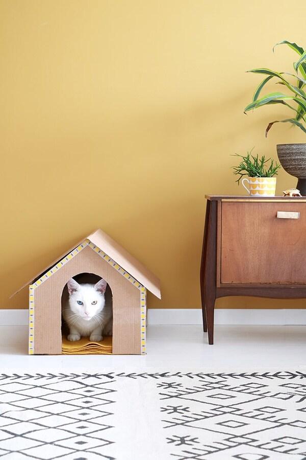 Kattenhuis met kat in de woonkamer met vloerkleed en een lage kast