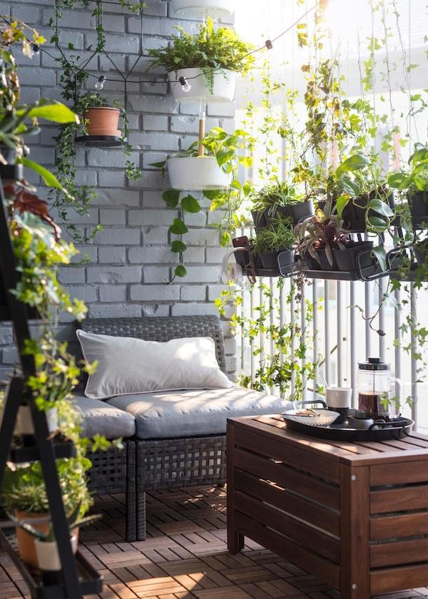 92/5000 Zelená oáza vytvorená na balkóne z vonkajšej sedačky, závesných kvetináčov a stojanov na rastliny.