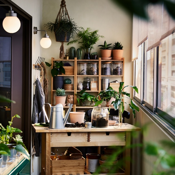 A balcony area with a wall of windows covered with half-pulled blinds. There are plants on shelving units around the space.
