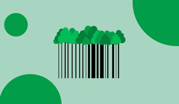 A barcode with tree leaves attached on top, against a green background.