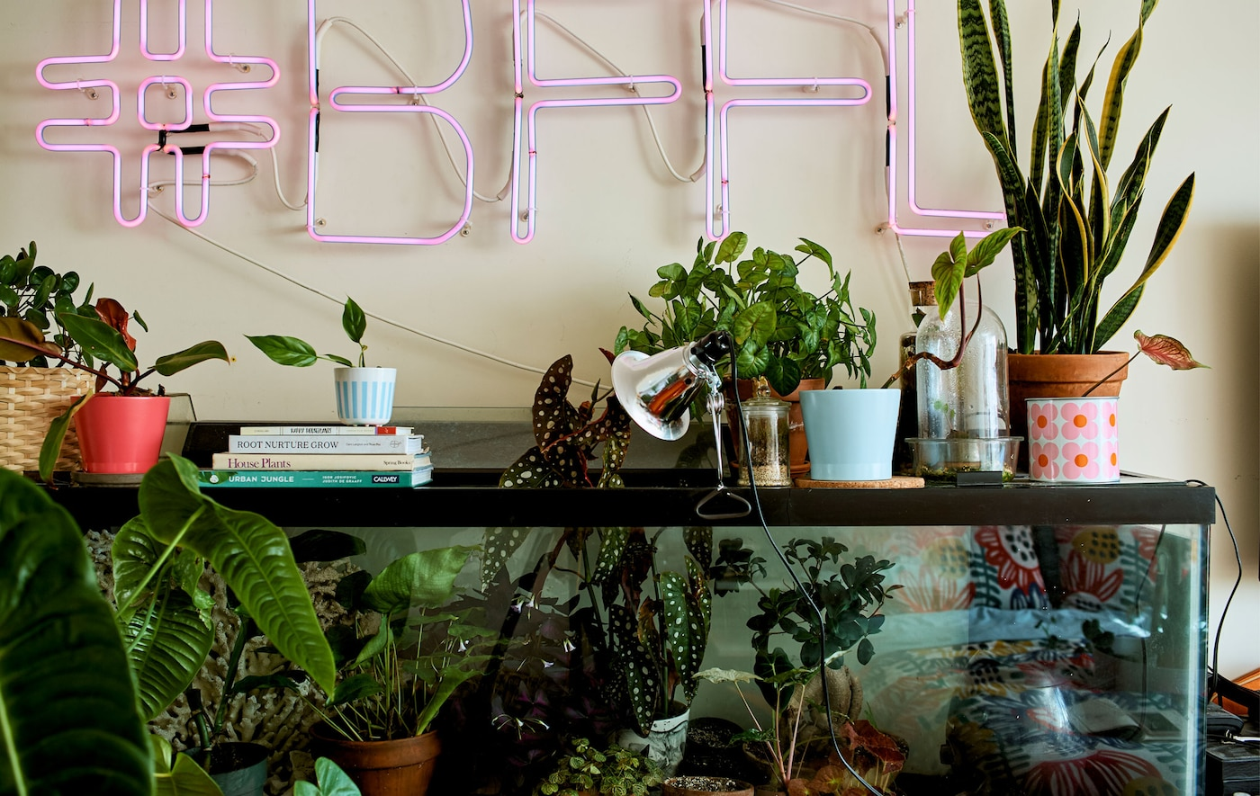 A bedroom with a plant display in a fish tank and pink neon sign on the wall above.