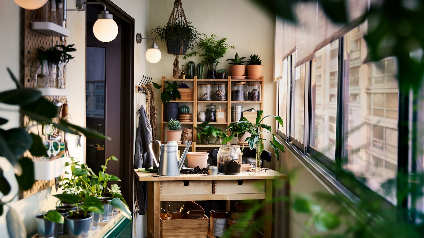 A birch cart, a bamboo shelving unit, a cabinet and wall storage with plants and gardening items all around.