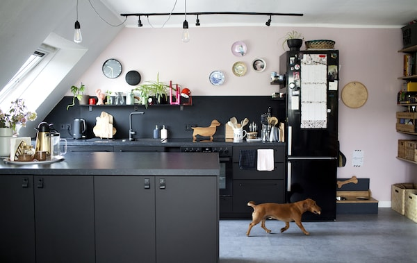 A black, white and pastel-pink open kitchen and a small dog.