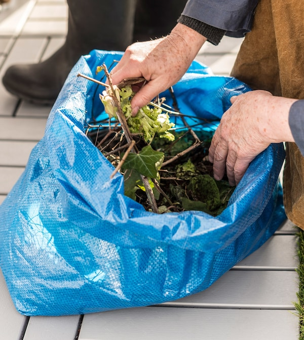 A blue IKEA FRAKTA bag with plant cuttings inside.