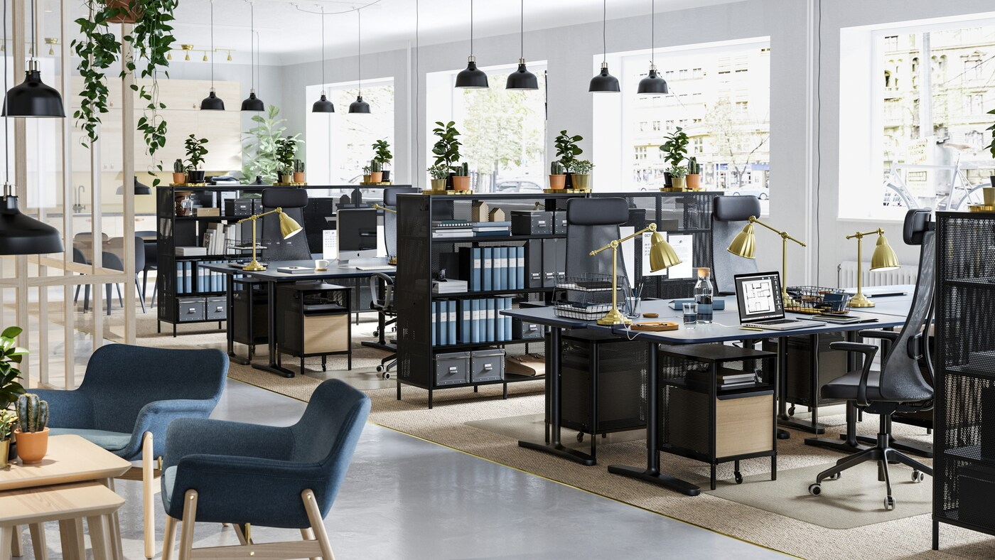 A business office space filled with plants on top of BEKANT black mesh shelving units and black sit stand desks.