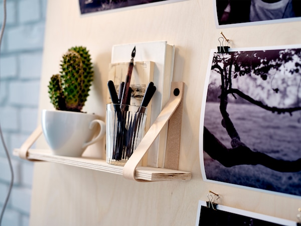 A cactus potted in a small mug sits on the shelf of an inspiration board made of plywood.