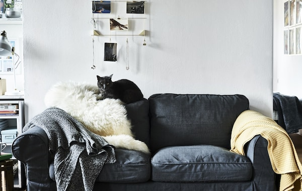 A cat sitting on the back of a grey sofa.