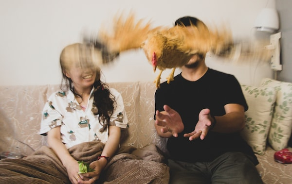 A chicken flies in front of Jiaqin and Gao in their living room.