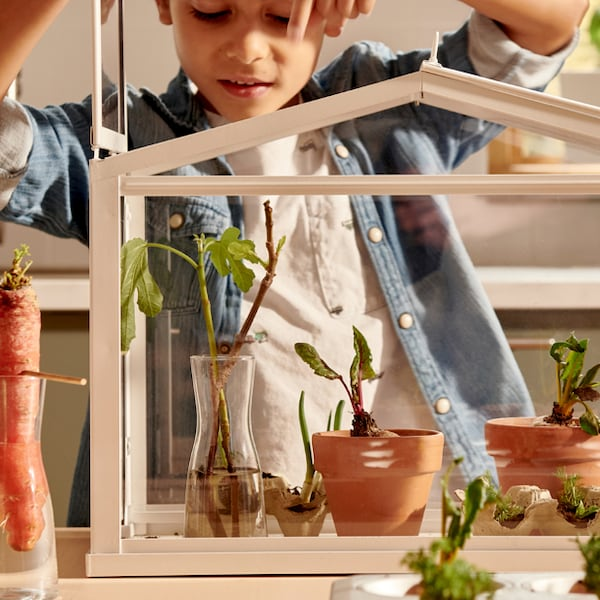 A child tending to plants in a small terrarium.