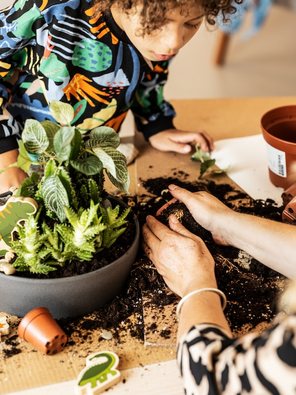 A child, with a colourful sweatshirt, is potting with soil, green plants and a PERSILLADE plant pot on a table indoors.