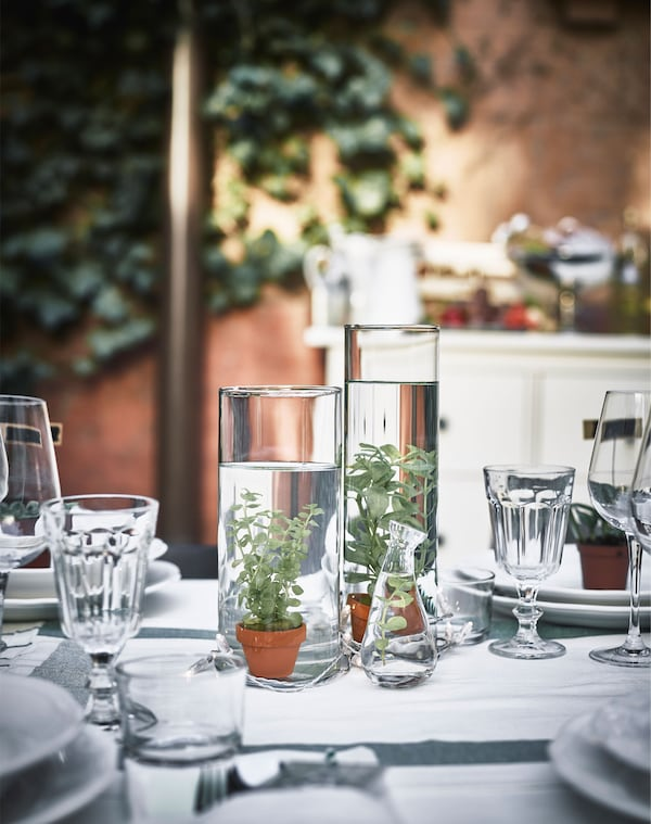 A close-up of centerpieces made of small water plants in glass vases filled with water.