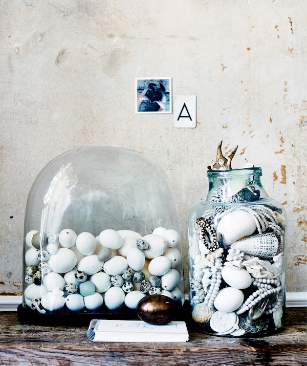 A collection of eggs in a glass dome and shells inside a glass jar.