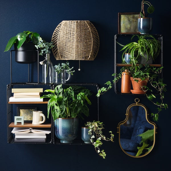 A dark blue wall with a mirror, a wall lamp and wired shelving units filled with potted plants and books.