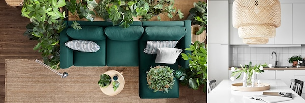 A dark green sofa and greenery living room and a white room with lighting and flowers