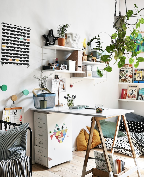 A desk area with hanging plants, shelves and artwork.