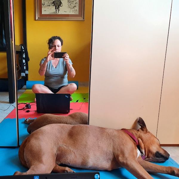 A dog is lying in front of a mirror. In the mirror a woman is sitting behind her laptop and taking a picture of the dog.