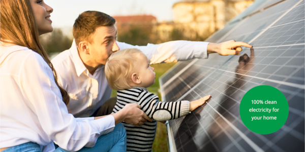 A family observing the solar panels