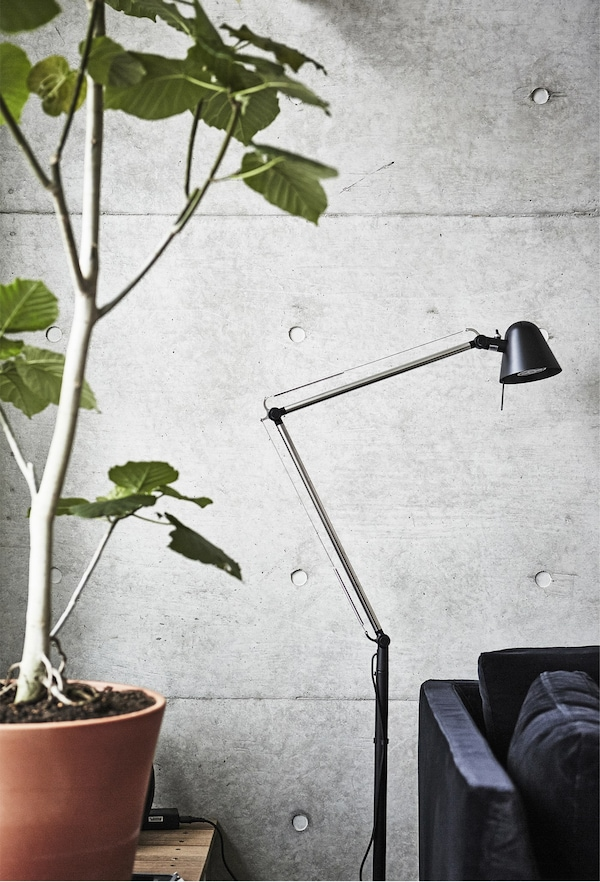 A floor lamp and large potted plant next to a grey wall.
