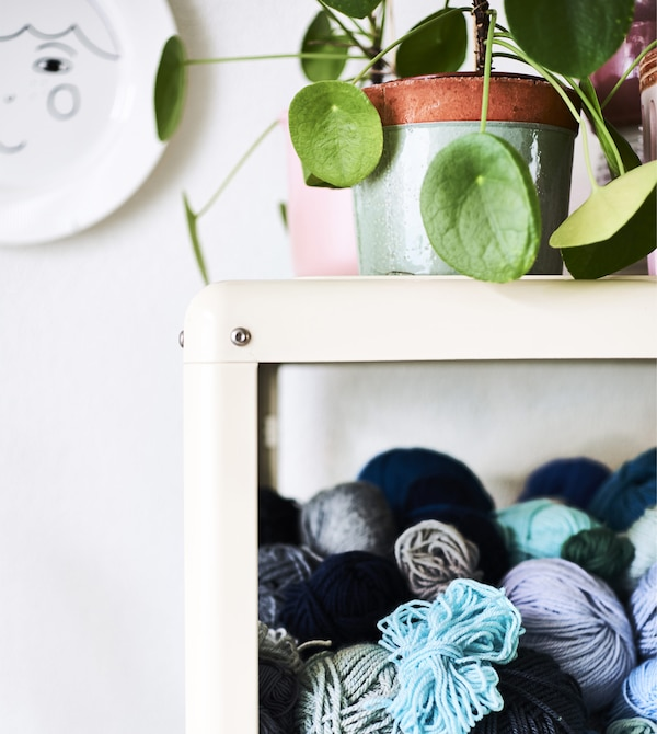 A glass cabinet with yarns inside and a plant on top.