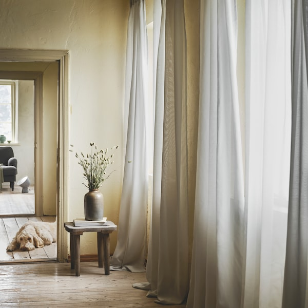 A golden dog is lying in a hallway with wooden floors and yellow walls lined with white GUNRID air purifying curtains.