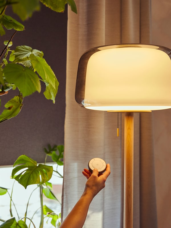 A hand holds a TRÅDFRI remote near a lit EVEDAL floor lamp. Behind is a window partly covered by a TRETUR roller blind.