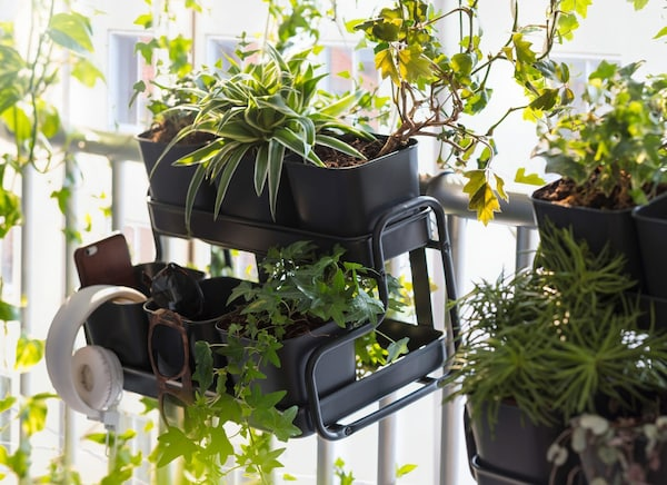 A IKEA SOCKER plant pot with holder, overflowing with plants.
