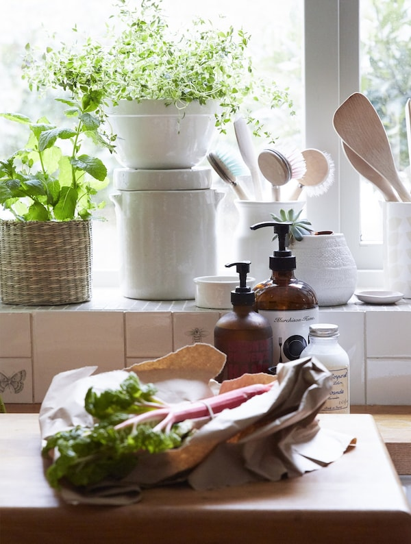 A kitchen counter with rhubarb on a chopping board and utensils and plants on the windowsill.