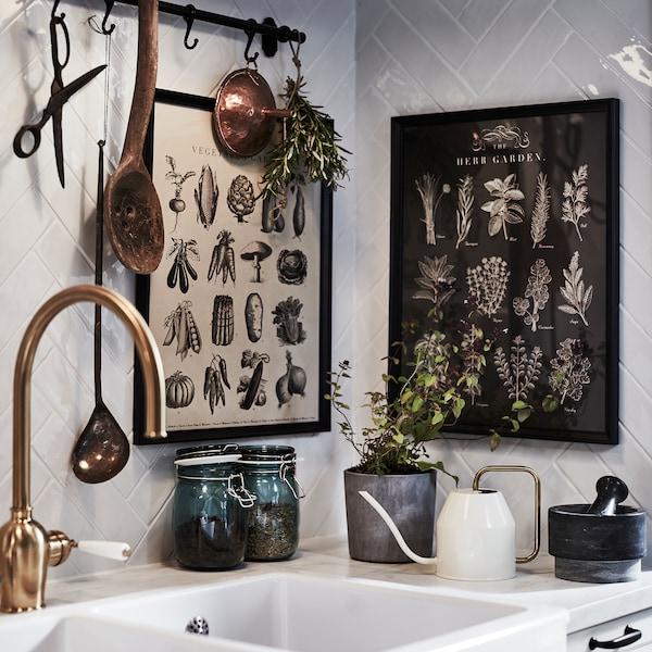 A kitchen sink, a brass-coloured mixer tap, picture frames with herb illustrations, herbs and a brass/white watering can.