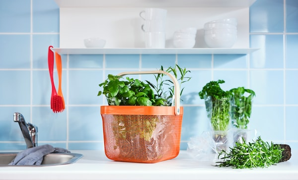 A kitchen top with green herbs inside a bright orange RISATORP basket in steel mesh with a handle made from birch veneer.