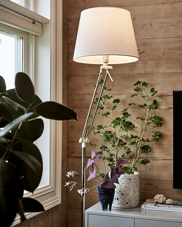 A lit floor light with white lamp shade stands next to a grey TV cabinet with Oxalis plant and books displayed on top.