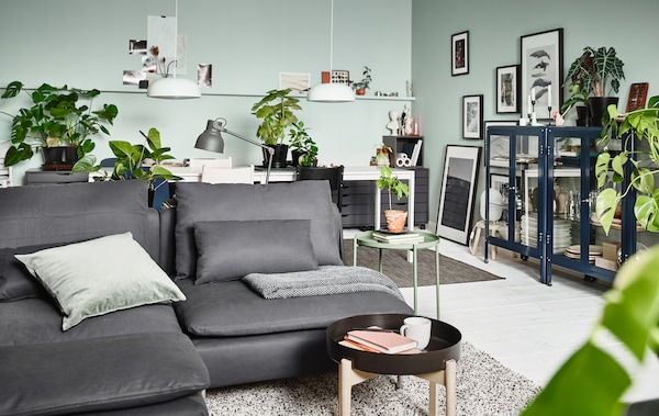 A living room with a grey sofa, small coffee table, blue glass display cabinets, plants and lamps.
