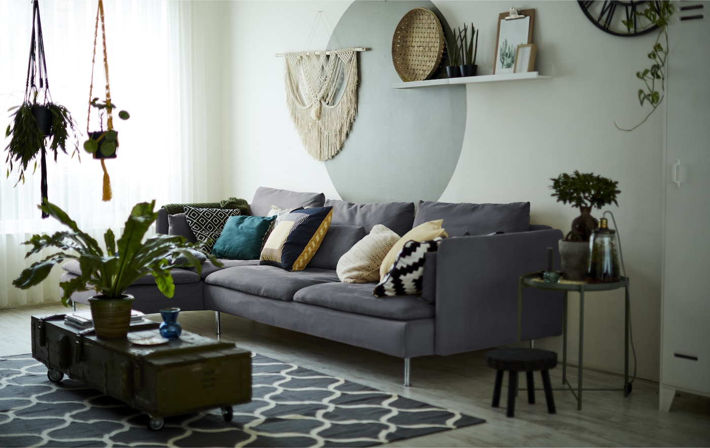 A living room with gray sofa and indoor plants.