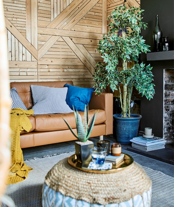 A living room with wooden wall, large plant and brown leather sofa.