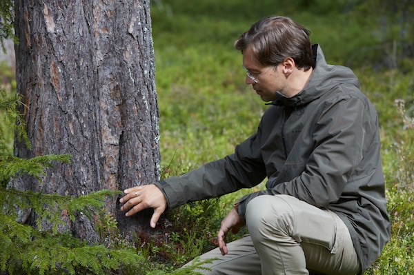A man wearing glasses sits next to a tree on a forest bed. He is inspecting the trunk of the tree by touching it.