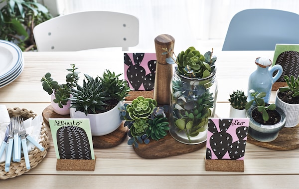 A pale wood table filled with potted succulent plants.