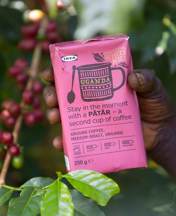 A pink package of PÅTÅR special edition single-origin, 100% Arabica coffee in the hand of a coffee farmer.