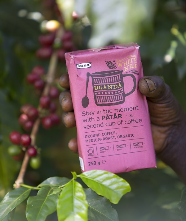 A pink packet of IKEA PÅTÅR White Nile coffee among the coffee bean plants.
