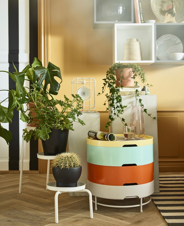 A plant stand, a side table, pedestals, and wall cabinets display decorative items and plants.