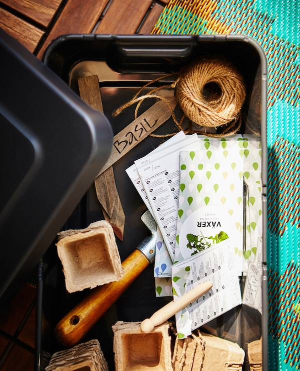 A plastic box is filled with gardening supplies.