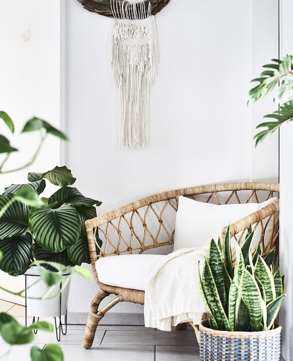 A rattan chair surrounded by pot plants.