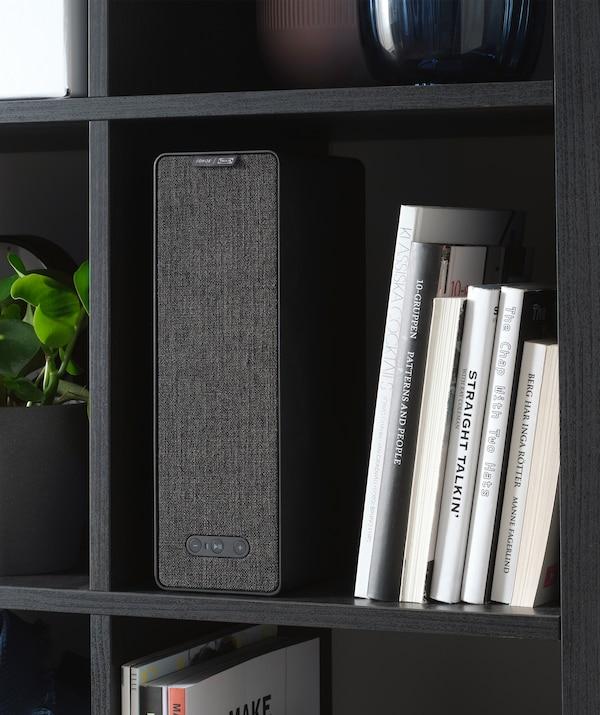 A rectangular speaker and books in a black shelving unit.