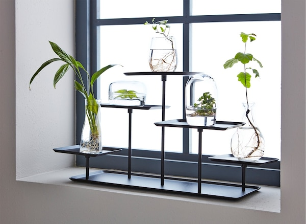 A SAMMANHANG display stand on a window sill with several plant cuttings in vases.