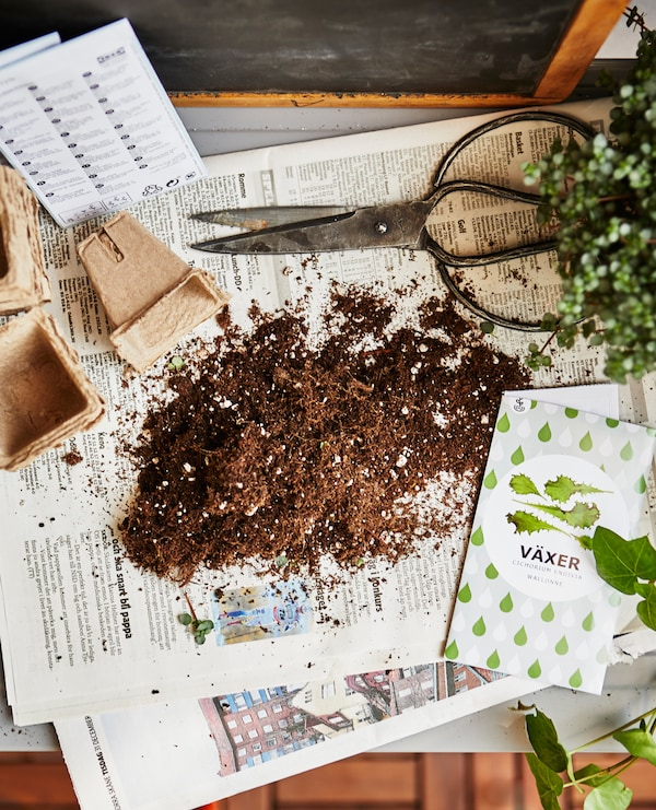 A shot from above of a gardening workspace, filled with soil and seed packets.
