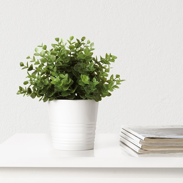 A small faux plant in a white pot on top of a white counter. There are magazines stacked beside it.