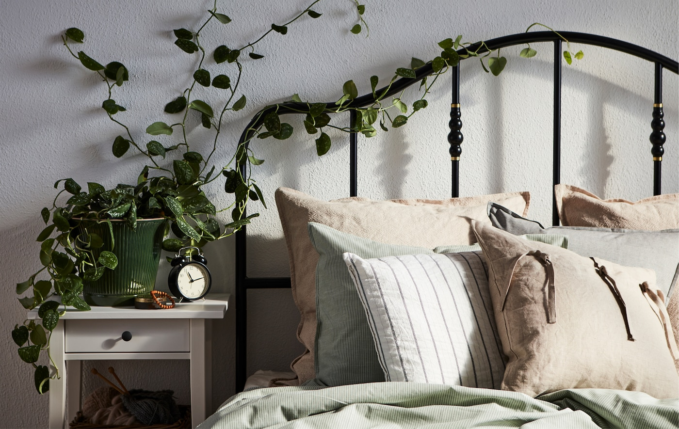 A sunlit bed with a black tubing headboard intertwined with climbing ivy growing from a pot placed on the bedside table.