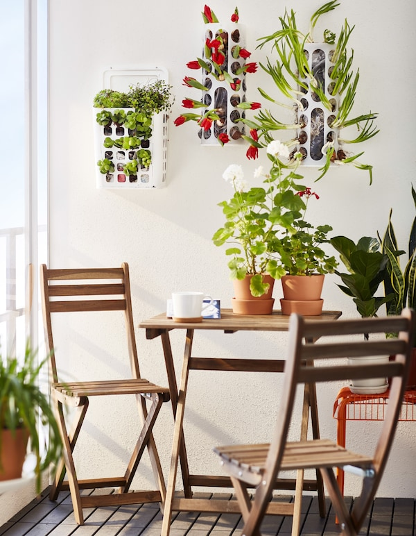 A table and chairs with plants.