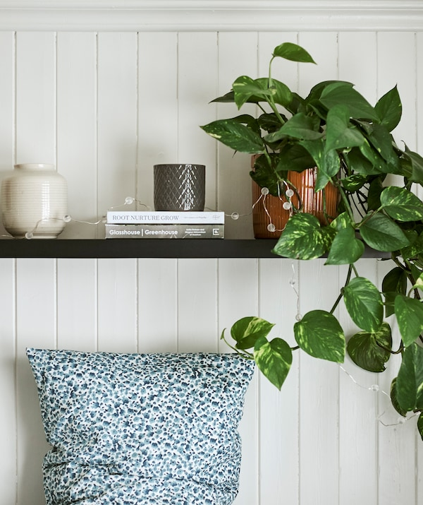 A trailing plant displayed with vases and books on a dark wood shelf hung above a bed with a blue and white dotted pillow.