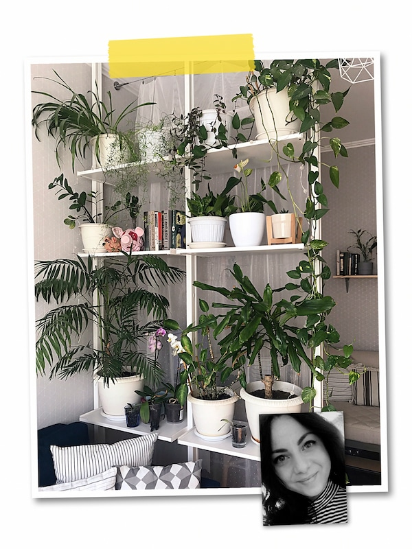 A two-image collage: a room-dividing, floor-to-ceiling ELVARLI unit with green plants, and an image of an IKEA co-worker.