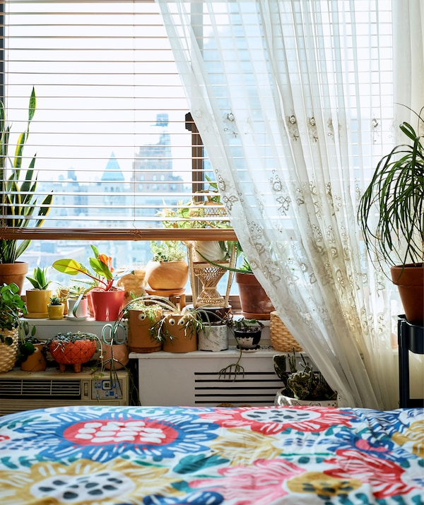 A variety of houseplants grouped on a windowsill next to a colourful bed.